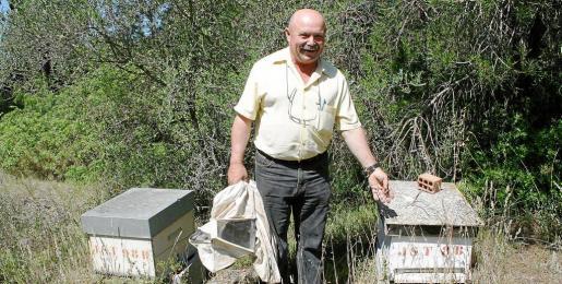 Josep Suñer señala las hierbas altas que rodean sus colmenas y que se han convertido en una trampa mortal para las abejas.