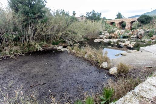 La posidonia muerta y la arena han subido más cerca del puente que otros años debido a los últimos temporales.