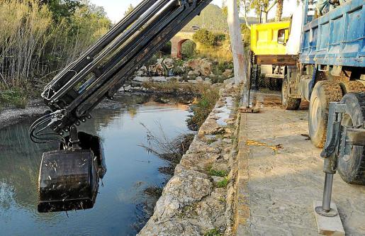 Las labores de limpieza del río, que presentaba una gran acumulación de posidonia y arena, empezaron ayer.