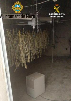 Imagen de uno de los habitáculos de la vivienda donde se secaba la marihuana.