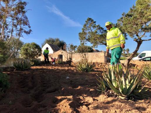 La brigada de Obras del Consell de Formentera durante los trabajos de mantenimiento y reparación.