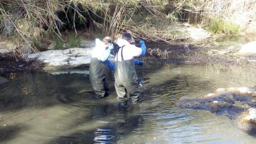Dos operarios limpian la zona.
