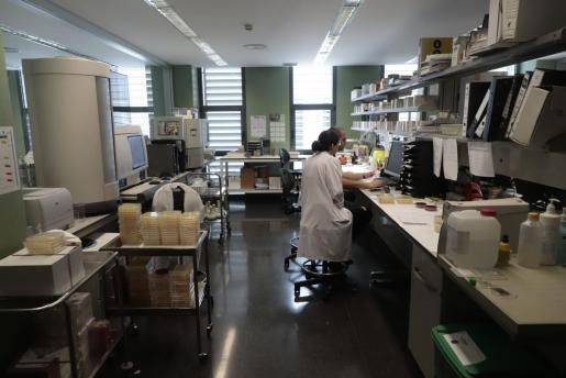Laboratorio de Microbiología de Son Espases donde se realiza la prueba.