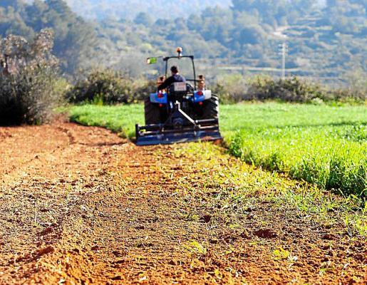 Un tractor, arando la tierra en un campo de la isla.