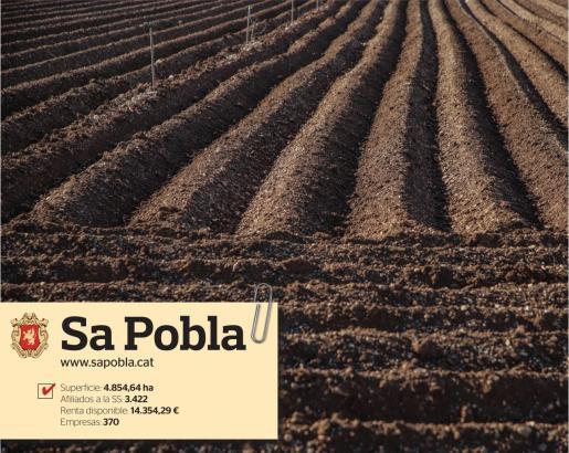 Sa Pobla es el símbolo de la tradición agraria mallorquina y de la innovación en el sector primario.
