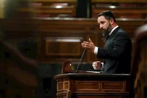 El presidente de Vox, Santiago Abascal, en el Pleno del Congreso - Pool