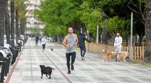 El municipio de Ibiza no se verá afectado por este cambio normativo y, por tanto, sigue con franjas horarias.