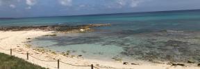 El Govern declara de interés autonómico el proyecto de suministro eléctrico en Formentera