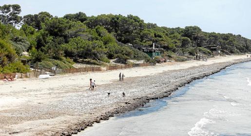 Las playas de Ibiza se empezarán a ver más concurridas de bañistas a partir de esta semana que entramos en fase 2 .