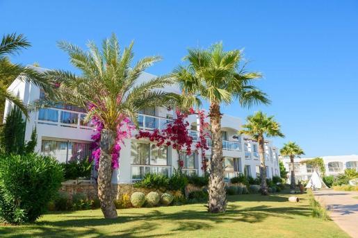 Destino Pacha Resort el día 16