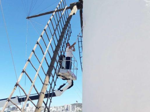 La Brigada municipal realizando trabajos de mantenimiento esta semana en sa Punta des Molí.