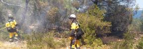 Alarma por un incendio forestal en Cala Bassa