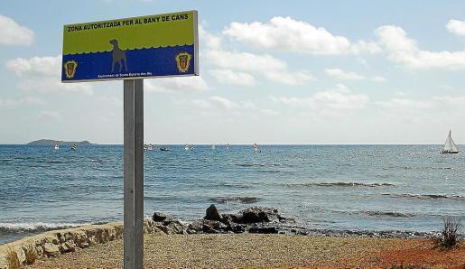 Una de las zonas del litoral del Santa Eulària habilitada para canes.