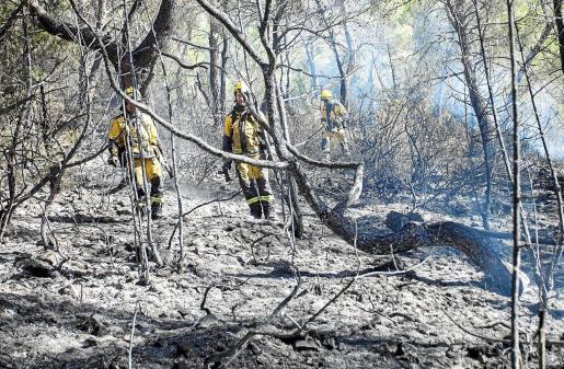 Un grupo de brigadistas del Ibanat refrescaban ayer una de las zonas arrasdas por las llamas en el Puig d'en Botja.