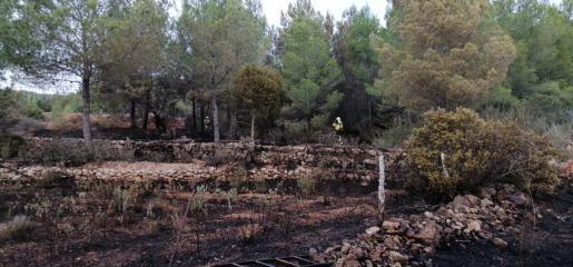 Zona afectada por el incendio en Sant Joan.
