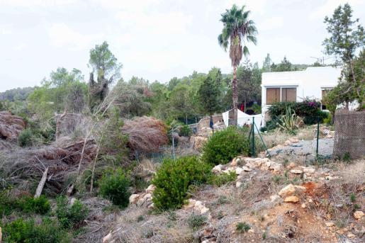 Una casa junto al torrente d'en Ribes, completamente taponado por árboles caidos.