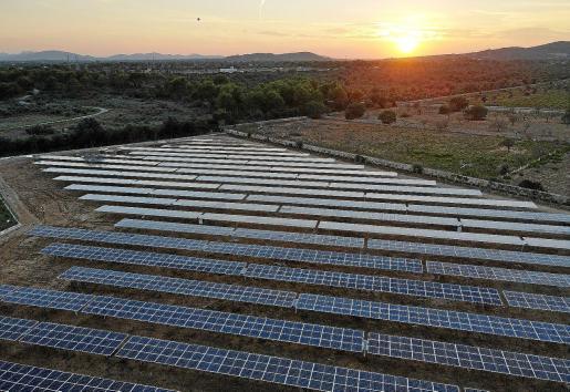 Imagen del parque fotovoltaico de Protur, ubicado en sa Coma, para autoconsumo de cinco hoteles que tiene en la zona.