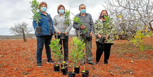 Maria Ferrer, a la izquierda, y tres integrantes de la Asociación de Vecinos de Santa Agnès muestran algunos de los plantones distribuidos ayer.