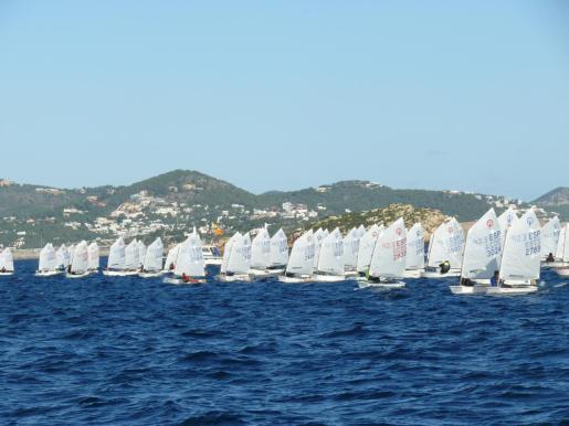 La flota surcando las aguas ibicencas.