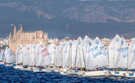 Competición de optimist de la última edición del Trofeo Ciutat de Palma.