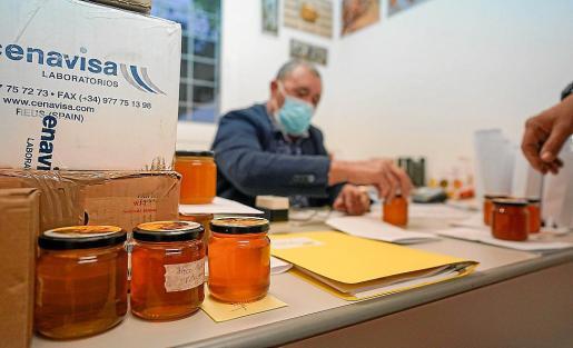 Magnífica respuesta la que hubo ayer por parte de los apicultores de las cuatro islas en la primera parte del III Concurso de Mieles, lo que demuestra la buena salud de la miel en las Pitiusas.