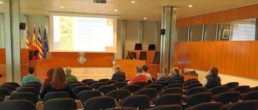 La fundación Ibiza Preservation presentó ayer su informe anual de 2019 en la sede del Consell d'Eivissa y online.