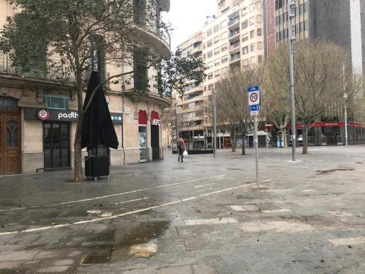Una imagen de Palma tomada el pasado 19 de marzo.