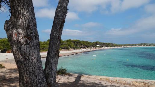 Parque Natural de Ses Salines de Ibiza y Formentera.