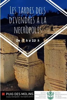 El Museo y la Necrópolis del Puig des Molins amplían sus horarios de visitas.