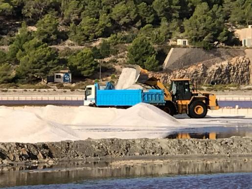 Un camión recoge sal en la Ses Salines de Ibiza.