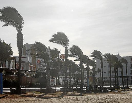Durante todo el fin de semana ha hecho mucho viento en las Pitiusas.