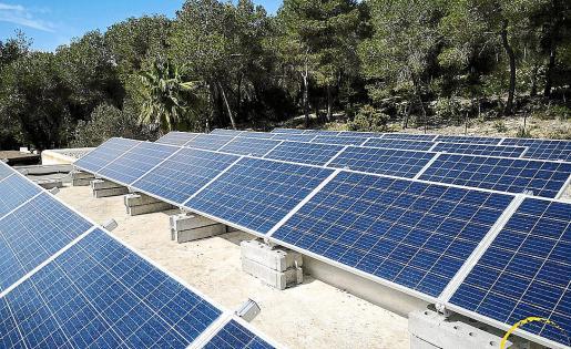 Preserva el medio ambiente con un servicio innovador y adaptado a tus necesidades.