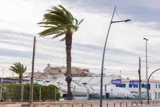 Rachas de viento de más de 80 km por hora protagonizaron el fin de semana en Ibiza y Formentera.