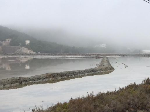 Banco de niebla en la zona de ses Salines.