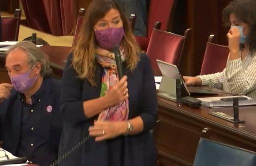 La consellera de Salud y Consumo, Patricia Gómez, en el pleno.
