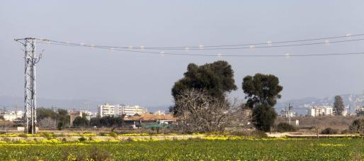 En el entorno de Ses Salines sigue habiendo muchos tendidos aéreos anticuados y sin soterrar, según denuncia el GEN GOB.