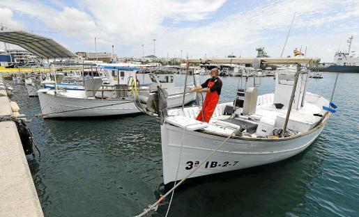 El patrón del Es Vedrà, Vicent Torres Gomila, amarra su llaüt en el puerto de Vila tras faenar durante toda la mañana.
