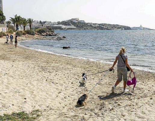 Imagen de archivo de la playa habilitada para perros en el municipio de Ibiza.