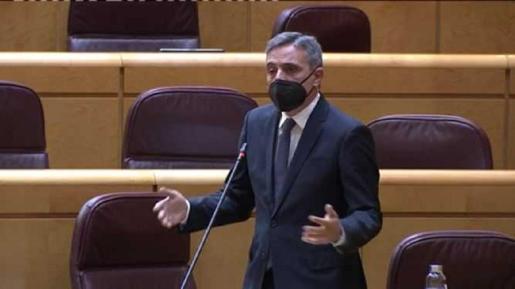 José Vicente Marí Bosó en la sesión del senado.