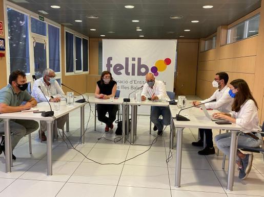 Imagen de la reunión entre representantes de la Federación de Entidades de Baleares (Felib) y del Govern.