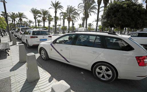 Varios taxis en la parada de la plaza de ses Fonts de Sant Antoni.