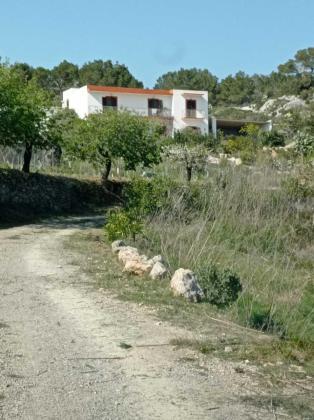 Imagen de la casa de Sant Mateu en la que se celebró la fiesta ilegal.