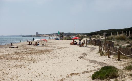 TUI Holanda cancela todos los vuelos y viajes a Baleares a partir de este viernes.