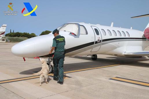 El avión privado en el que viajaba el joven de 33 años con todo un surtido de drogas. El vuelo llegó de Las Vegas, Estados Unidos.