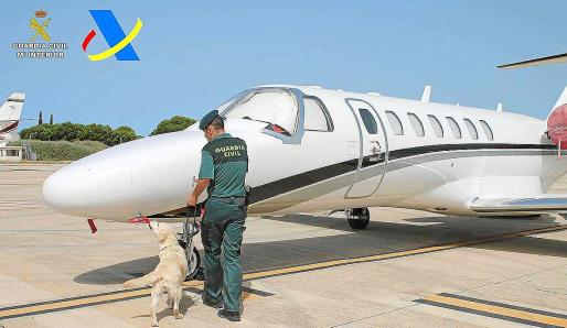 Las drogas fueron detectadas por efectivos de Vigilancia Aduanera y de la Guardia Civil en el aeropuerto de Ibiza.