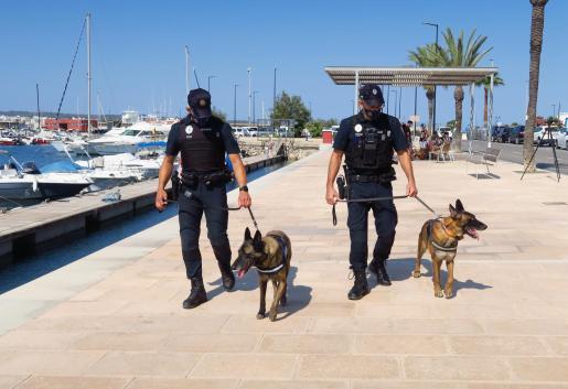 Sant Antoni presenta la nueva Unidad Canina de la Policía Local.