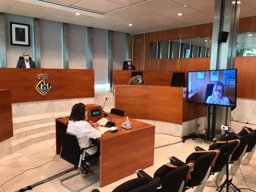 Pleno del Consell de Ibiza.