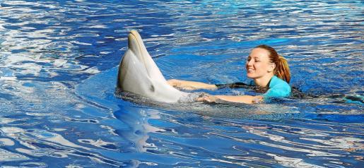 Melani Costa, nadando con uno de los delfines.