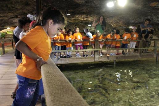 Además de dar de comer a los peces, los niños jugaron a identificar las distintas especies.
