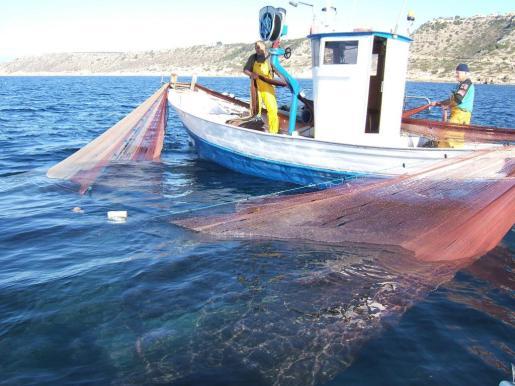 Los profesionales del sector pesquero podrán ofrecer un servicio complementario, como el de subir a turistas a bordo para que vean cómo se faena en alta mar.
